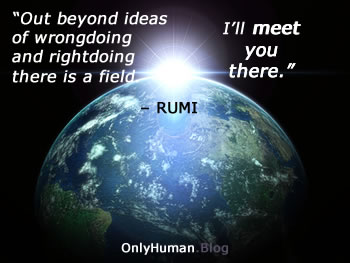 rumi-fields-quote_only-human
